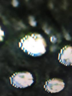 imagen adjunta de TV LG 32LC55, Desplazamiento de pixeles blancos en las zonas de brillo